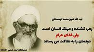 آیت الله شیخ محمد کوهستانی: غذای حرام، دودمان را به هلاکت می رساند.